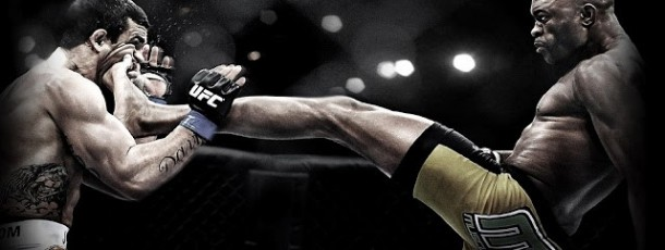 LE MMA  (MIXED MARTIAL ARTS)